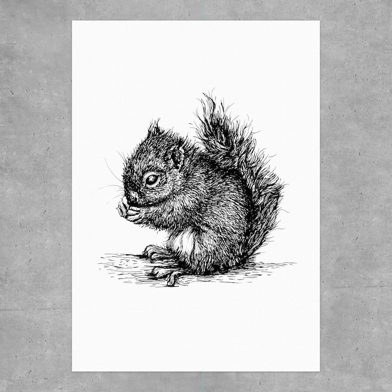 Digital print A4: Baby Squirrel 2020 image 0