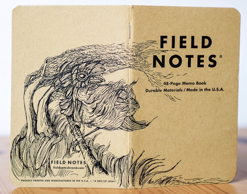 Notebook 161 Field Notes Unikat image 0