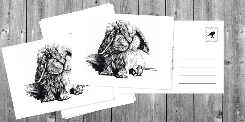 Postcards 5 pieces: Little bunny image 0