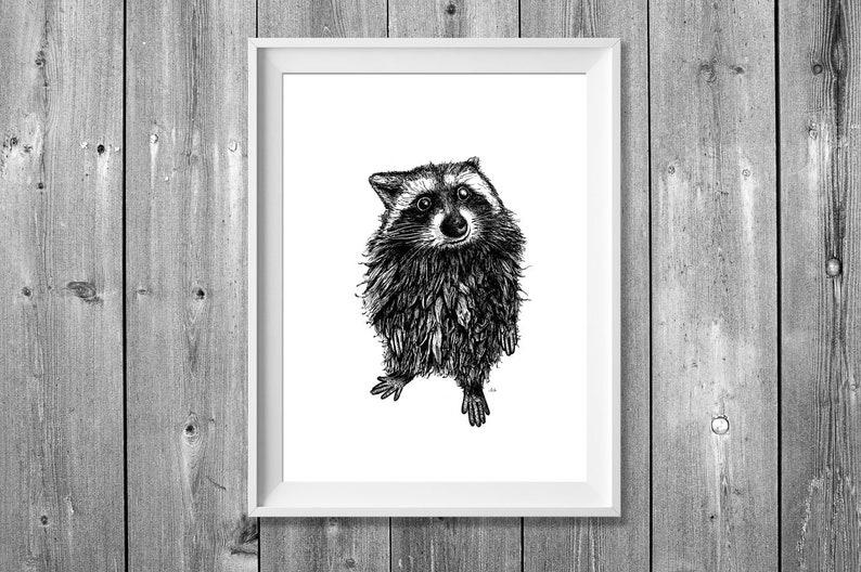 Digital printing A4: Raccoon image 0