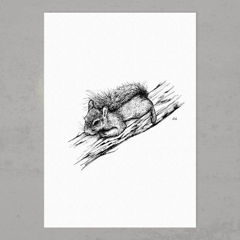 Digital Print A4: Small Squirrel 2018 image 0