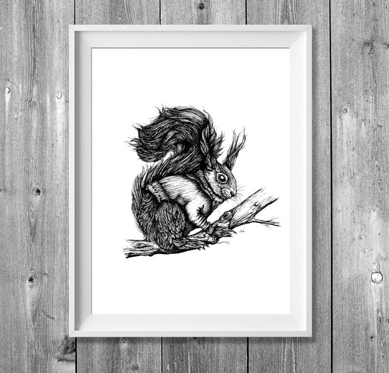 Digital printing A4: November Squirrel image 0