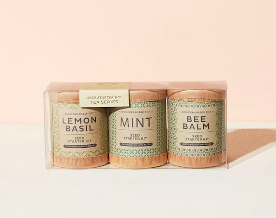 Seed Starter Kit | Tea Series | Set of 3: Lemon Basil, Mint, Bee Balm