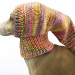 Whippet Snood, dog hat, Italian greyhound clothing, Dog Pixie hat, Lurcher small dog hat Lurcher snood greyhound puppy dog clothes galgo hat