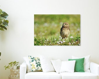 Canvas Print of Baby Burrowing Owl in Wildflowers Nature Springtime Flowers Cute Young Bird Owlet Green - Wildlife Photography