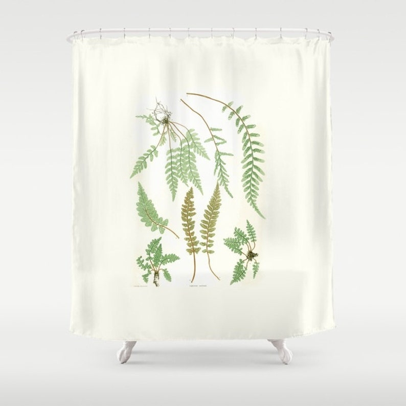 Shower Curtain Ferns 71 By 74 Home Decor