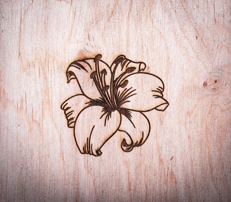 Lily Flower Bulb