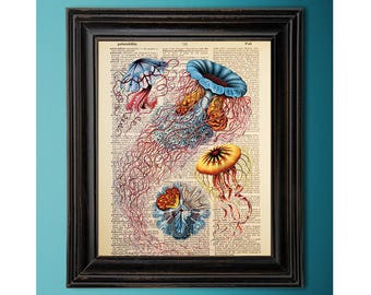 Ernst Haeckel, Jellyfish, Medusas, Vintage Ocean Art Print, Dictionary Page, Book Art, Vintage Book Page, Recycled, Upcycled, Geek Décor