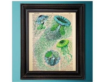 Ernst Haeckel, Jellyfish, Medusas, Blue Green, Vintage Ocean Art Print, Dictionary Page, Book Art, Vintage Book Page, Upcycled, Geek Décor