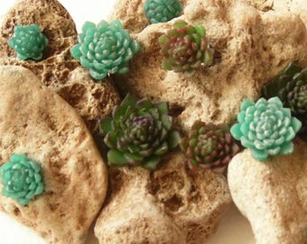 Succulent earrings tiny stud succulent jewelry succulent stud Polymer clay jewelry Gift for her green jewelry green earrings Cactus jewelry