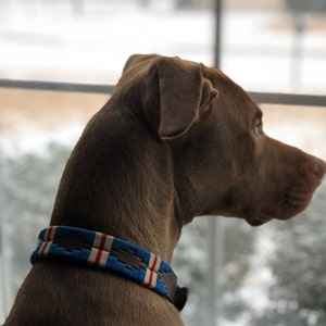 The Pacific Leather Dog Collar
