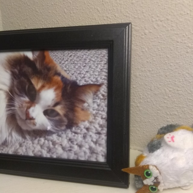 jenbeck7231 added a photo of their purchase