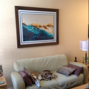 Michael Sennit added a photo of their purchase