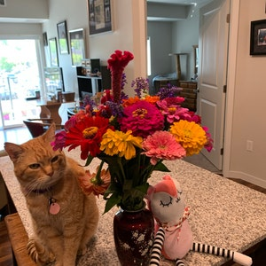 candybear added a photo of their purchase