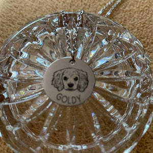 Personalized Gifts for Mom Dog Mom Personalized Necklace for Women Dog Necklaces Pet Memorial Engraved Necklace Pet Portrait Custom - LCN-AP photo