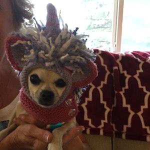 Knitting Pattern Mini Dachshund Dog Sweater Cloud 9 Pet Etsy