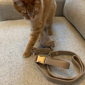 Personalized leather dog leash, personalized dog leash, leather personalized dog leash, leather dog accessories photo