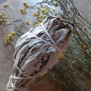 White Sage Bundle AA1 photo
