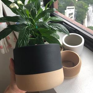 daffodilwan added a photo of their purchase