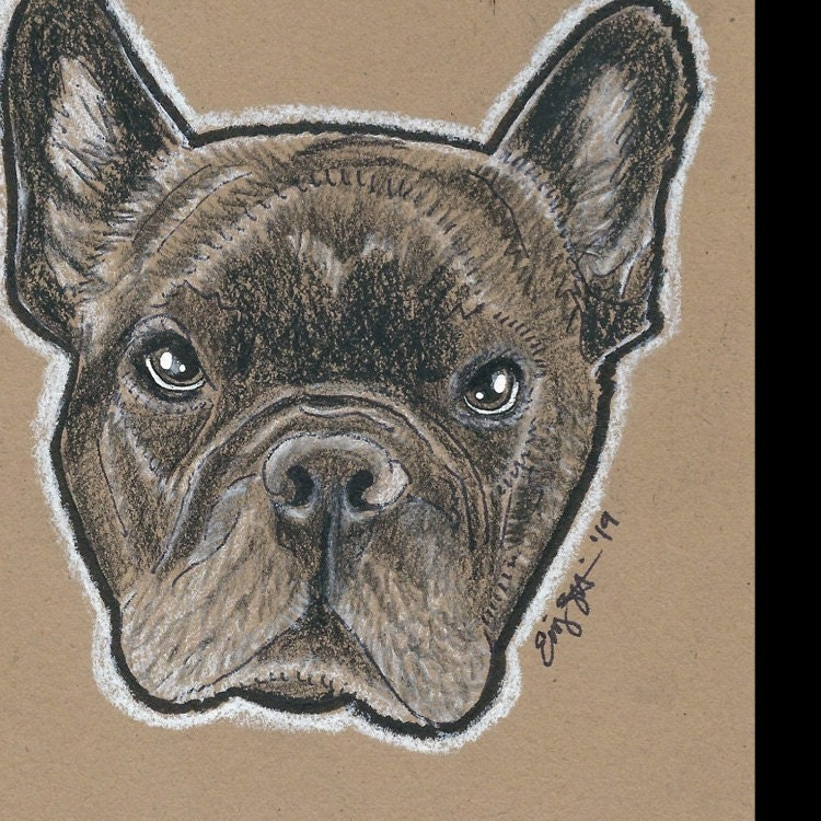 b9d469c94824 My coworker absolutely loved your work and how well you captured Beau!  Thank you :)