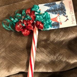 Grandma Terri added a photo of their purchase