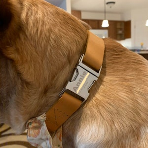 Leather dog collar, Personalized dog collar, Personalized leather dog collar, cat collar, leather cat collar, personalized cat collar photo