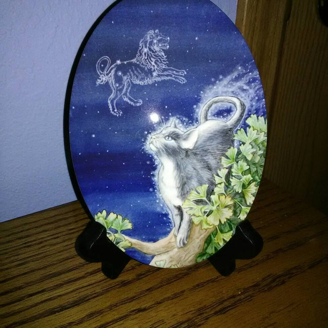 nightsunfire added a photo of their purchase