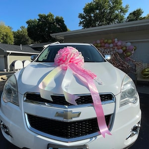 Nicole Lucas added a photo of their purchase