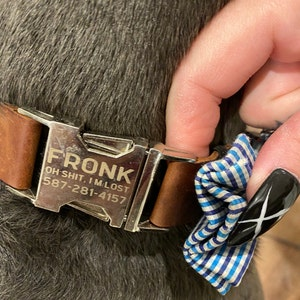 Engraved leather dog collar, Personalized dog collar, Personalized leather dog collar, cat collar, leather cat collar, personalized collar photo