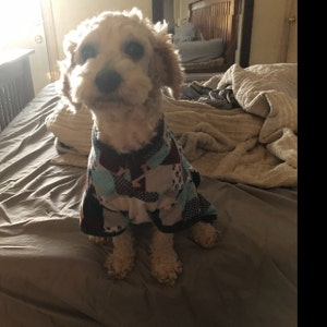 Large breed dog pajamas, flannel, lounge wear, sleepwear, pjs - made to  order, custom size - size S to XXL