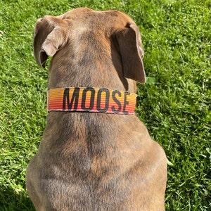 Small Bisbee Dog Collar