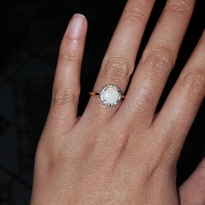 Terril added a photo of their purchase