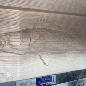 Walleye crv3D file for CNC