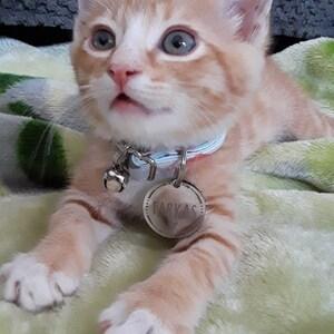 Personalized Pet Tag Custom Dog Tag Cat Tag Cat Collar Tag Cat ID Tag Dog ID Tag Dog Name Tag Heart Paw Bone photo