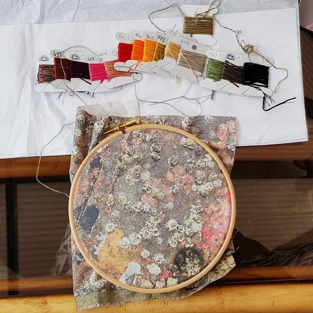 Jessie McKinnon added a photo of their purchase