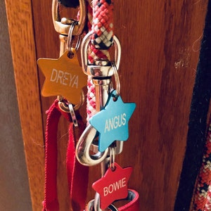 Pet ID Tag for Dog or Cat Collar - Up to 8 Lines of Custom Engraving - Durable Anodized Aluminum photo