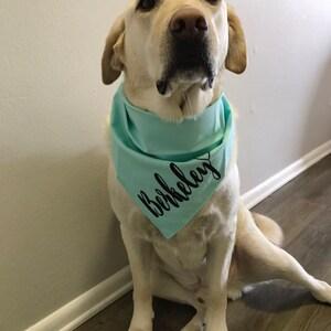 Dog Bandana Working on My Dog Bod Funny Boho Dog Collar Personalized Best Friend Gift Dog  Dog Lover Gift Bandana Dog Dad Gifts For Her