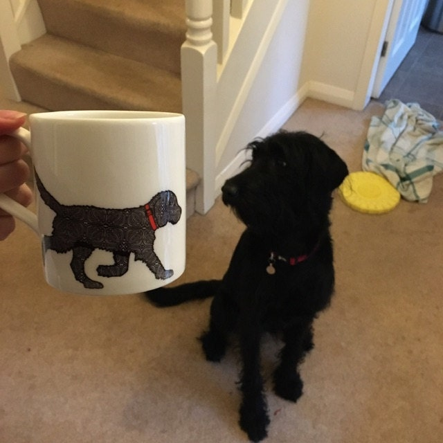 Fran Billingsley added a photo of their purchase