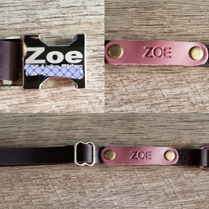 Leather dog collar, Personalized dog collar, dog collar, leather, FREE MACHINE ENGRV buckle, personalized leather dog collar personalized photo