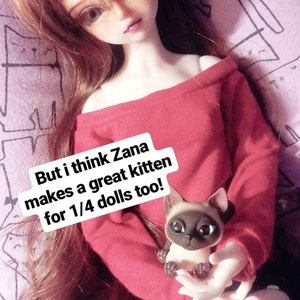 Elizabeth Salgado added a photo of their purchase