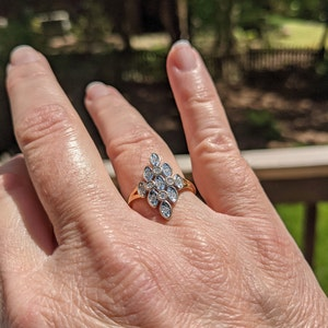 Leslie Haney added a photo of their purchase