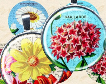 Vintage French Flowers Digital Collage Sheet 1 Inch Round 25 mm Circles 4x6 Inch Printables for Bezels Pendants piddix 1068