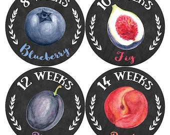 Pregnancy Stickers, Belly Bump Stickers, Pregnancy Milestones Stickers, Weekly Pregnancy Stickers, Fruits Garden Stickers
