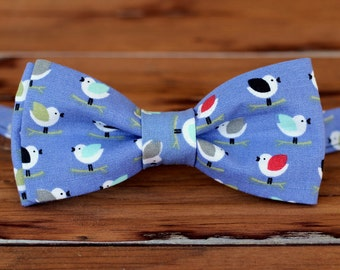 Boys Bird Bow Tie - Multi-Colored Birds on Periwinkle Blue cotton bowtie, bow tie for baby infant toddler child, little boy bow tie, gift