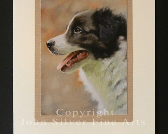 Border Collie Dog Portrait Hand Made Greetings Card. From Original Paintings by JOHN SILVER. GCBC001
