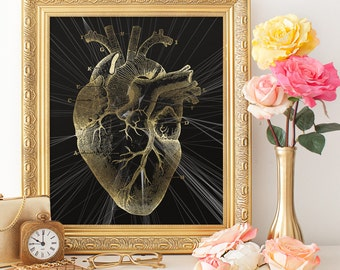 Cardiology Office Art, Anatomical Heart Print, Vintage Medical Illustration, Heart Poster, Instant download, Cardiologist Cardiac Clinic Art