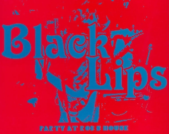 45 t 7' The Black Lips-Party at Rob s House-VG-