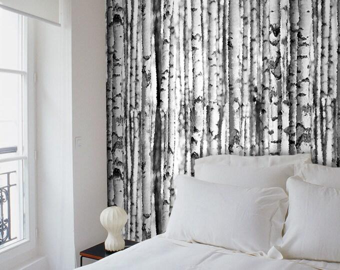 Birchwood Wallpaper, Birch tree wallpaper black and white.