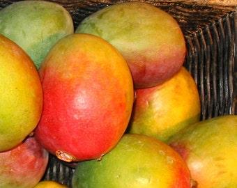 Pineapple Mango Habanero Pepper Jam BBQ Farmers Market Appetizer