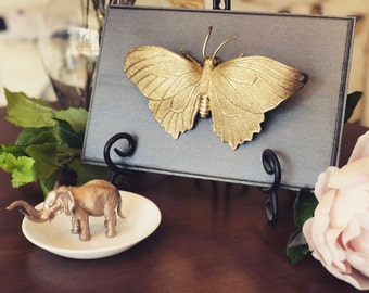Butterfly Home Decor, Gold Faux Butterfly Taxidermy, Insect Plaque, Wall Art, Home Decor